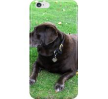 my lodger waiting for me to cook lunch iPhone Case/Skin