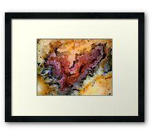 Xenolabia (Plume Agate) Framed Print