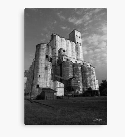 Rice Towers of Katy Texas Canvas Print