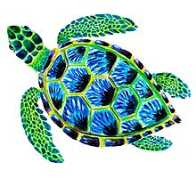 Psychedelic sea turtle in acrylic Photographic Print