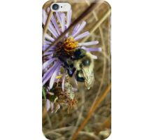 Lone Bee iPhone Case/Skin