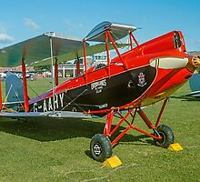 De Havilland DH.60M Metal Moth G-AAHY by Colin Smedley