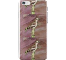 Water Colour Curlews iPhone Case/Skin