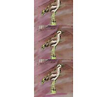 Water Colour Curlews Photographic Print
