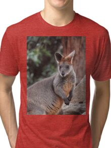 Red-necked wallaby Tri-blend T-Shirt