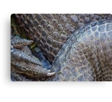 Gator Belly Hand Thigh Canvas Print