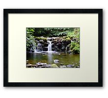 Baby waterfall Framed Print