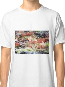 Autumn Mosses Classic T-Shirt