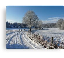 Snowy walk Canvas Print