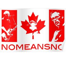 NoMeansNo Flag Poster