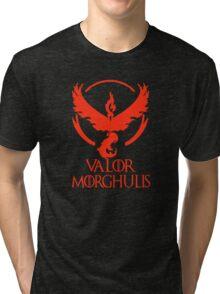 Team Valor Tri-blend T-Shirt
