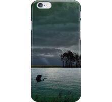 4262 iPhone Case/Skin