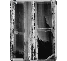 Historical Ruins of a Hospital iPad Case/Skin
