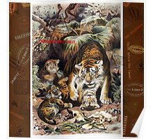 Tigers for Responsible Travel Poster