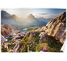 Bergparadies Poster