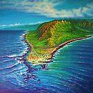 Kaena Point - aerial by jyruff