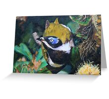 Blue-faced Honeyeater Greeting Card
