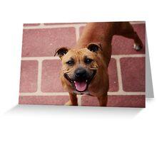 Say Cheese! Greeting Card