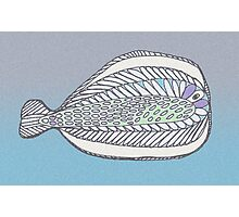 Funny Flat Fish Photographic Print