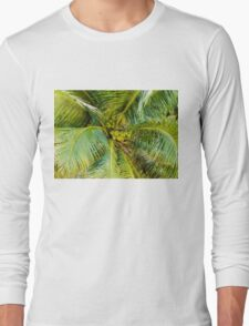 Bunch of green coconuts in palm tree Long Sleeve T-Shirt