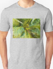 Bunch of green coconuts in palm tree Unisex T-Shirt