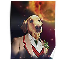 THE 5TH DOGTOR Poster