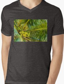 Bunch of green coconuts in palm tree Mens V-Neck T-Shirt