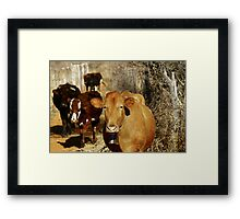 With BElls On  Framed Print