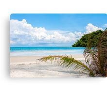Exotic tropical beach with white sand and blue waters Canvas Print