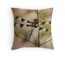 Twelve-spotted Skimmer Throw Pillow