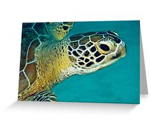 Green sea turtle portrait Greeting Card