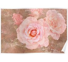Candy roses Poster