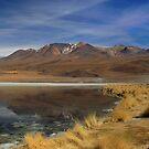 bolivia desert uyuni lake by Ty Cooper