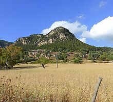 Rural Majorca Between Deia And Valldemossa by Fara