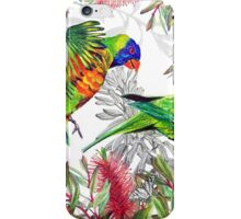 Lorikeets composition for Drawing Paradise iPhone Case/Skin