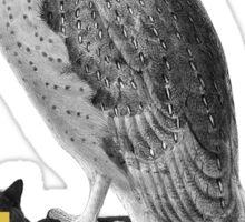 BLIND ME NOW - OWL Sticker
