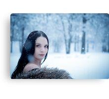glamour portrait in the winter Canvas Print