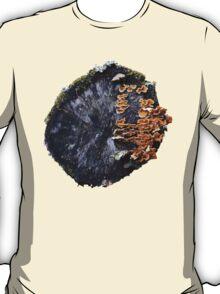 Stump 9 T-Shirt