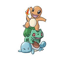 Charmander, Bulbasaur and Squirtle Photographic Print