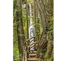 Marymere Falls Photographic Print