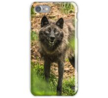 Black Wolf In Forest iPhone Case/Skin