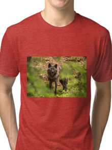 Black Wolf In Forest Tri-blend T-Shirt