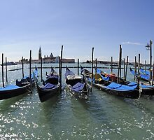 Gondolas at Saint Mark's Square, Venice by avresa