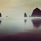 Haystack Rock by LawsonImages