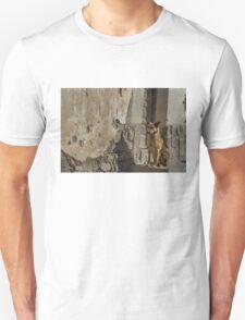 Waiting Unisex T-Shirt