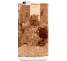 Bill the black cat, and his scarecrow friend iPhone Case/Skin