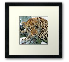 This is a perfect place for me!! Framed Print