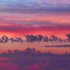 Morning 20151021-22 by Carolyn  Fletcher