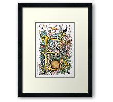 """The Illustrated Alphabet Capital  E  """"Getting personal"""" Framed Print"""