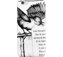 Little Fuss-and-Feathers iPhone Case/Skin